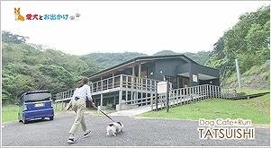 Dog Cafe+Run TATSUISHI