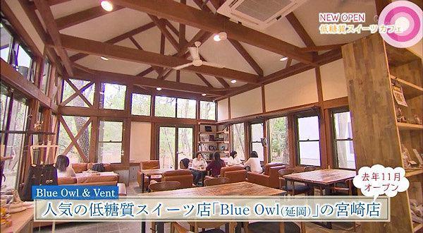 Blue Owl & Vent