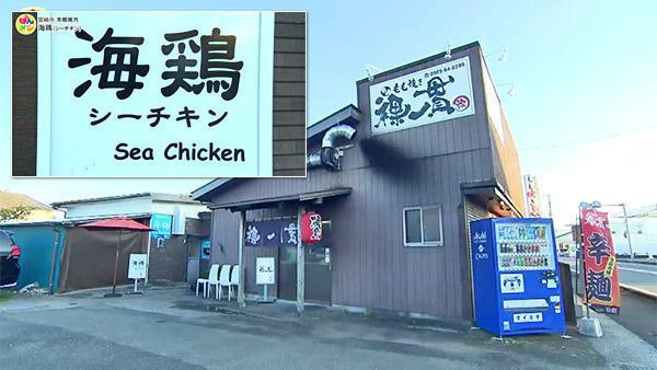 海鶏 Sea Chicken