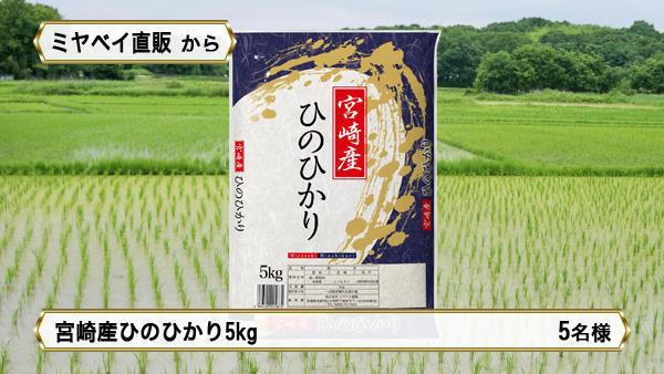宮崎産ひのひかり 5kg