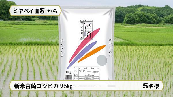 新米宮崎コシヒカリ5kg