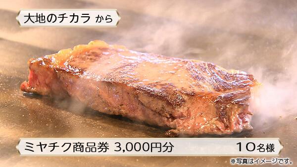 ミヤチク商品券 3,000円分