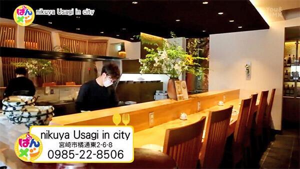 nikuya Usagi in city