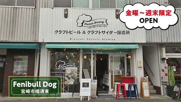 Fenibull Dog