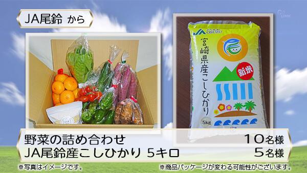 野菜の詰め合わせ・JA尾鈴産こしひかり 5キロ