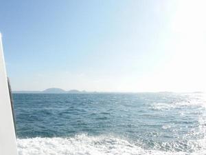 181227イルカのいない海.jpg