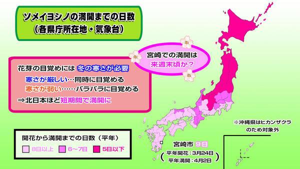 190322全国桜満開まで日数.jpg