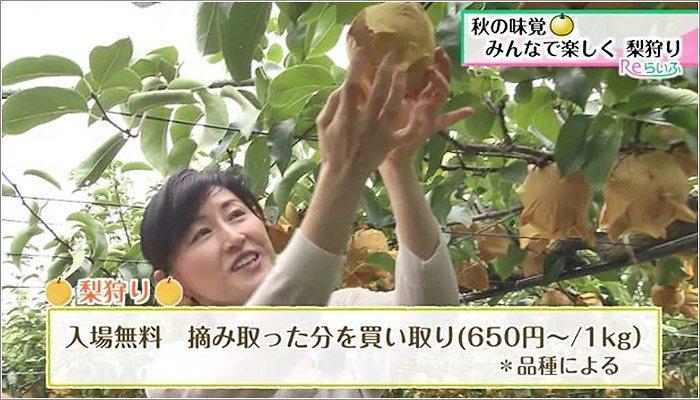 03 梨狩り