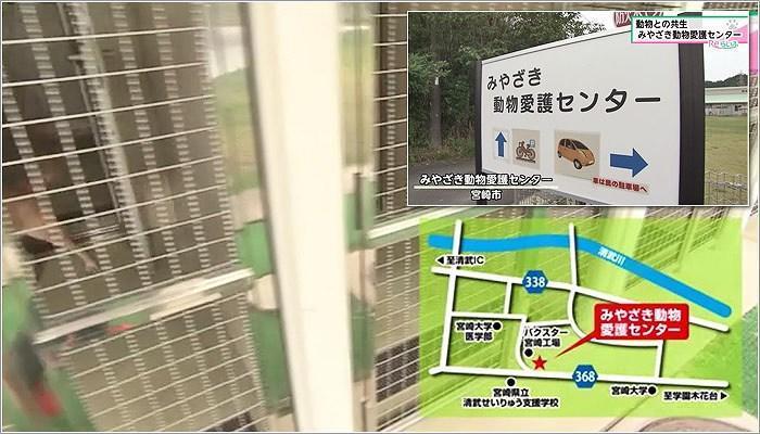 01 みやざき動物愛護センター