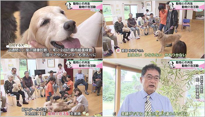 05 訪問する犬のケア/巴院長