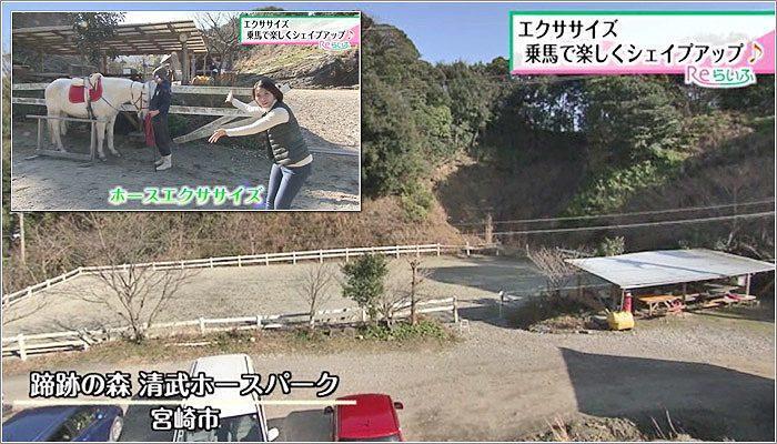 01 蹄跡の森 清武ホースパーク