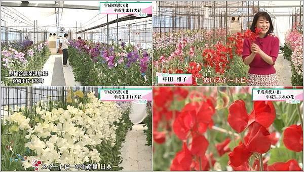県総合農業試験場