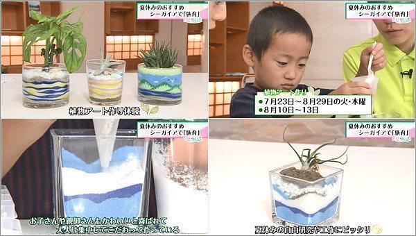 植物アートづくり体験