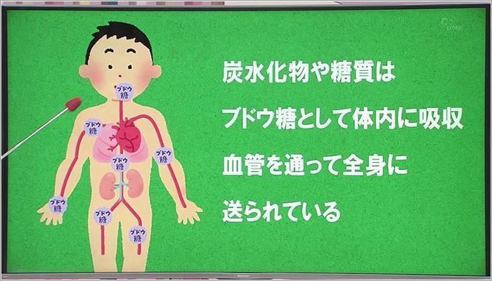 01 ブドウ糖と体のしくみ
