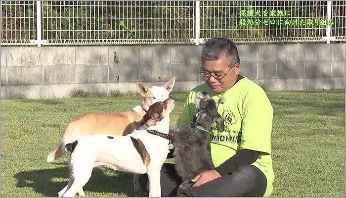 09 日向市に住む篠原さんと犬たち
