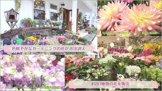04 FlowerDesign Colorful・Colorful!店内